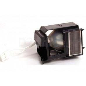 SP-LAMP-021